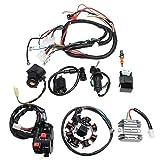 Cableado eléctrico cableado eléctrico Telar CDI estator del motor completo Set for ATV QUAD 150/200 / 250CC Piezas del motor de la motocicleta