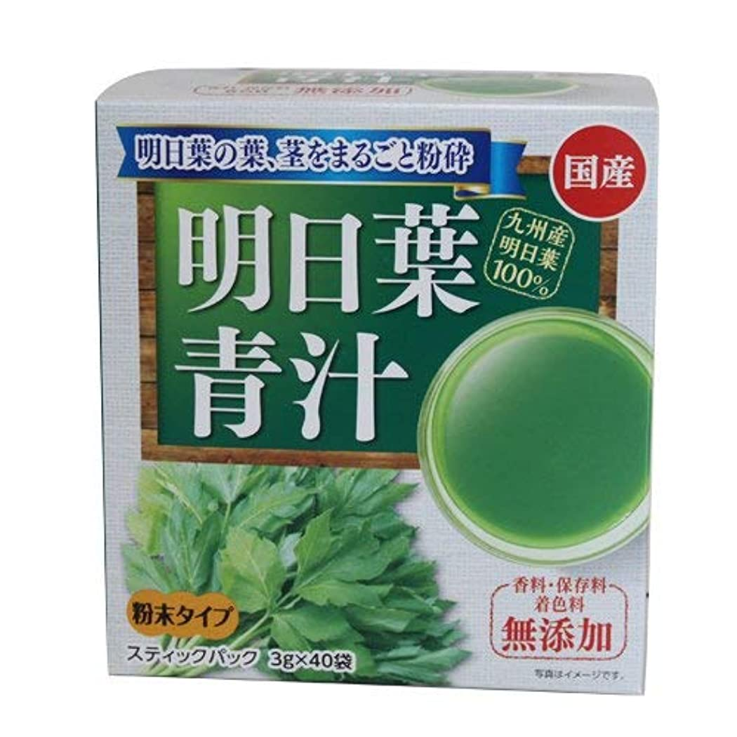 細菌肺炎スリラー新日配薬品 九州産明日葉青汁 3g×40包×10個