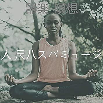 器楽-瞑想