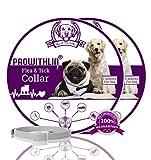 prowithlin Collar Antiparasitario para Perros contra Pulgas, Garrapatas Y Mosquitos, 8 Meses de Duración de Protección, Composición de Aceite Natural, No tóxico y Seguro (2 Paquetes)