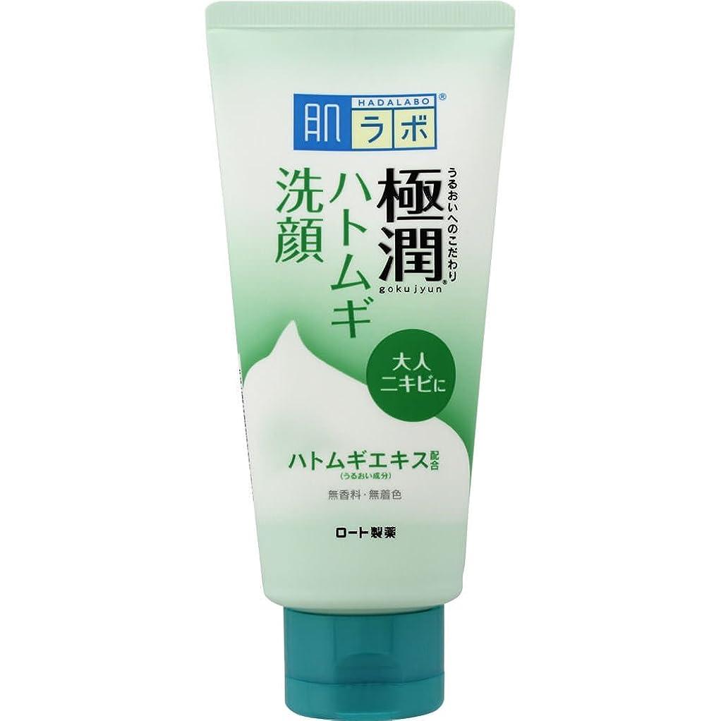 家族キャベツ確かめる肌ラボ 極潤 毛穴洗浄 大人ニキビ予防 ハトムギ洗顔フォーム 100g