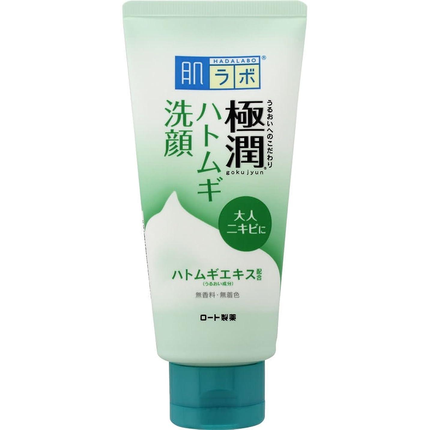 逆説貫通する配分肌ラボ 極潤 毛穴洗浄 大人ニキビ予防 ハトムギ洗顔フォーム 100g