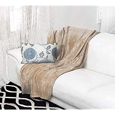 Premium Velvet Ultra Soft and Luxurious Plush Textured Couch Throw Blanket, 50 x 60  Taupe (Tan)