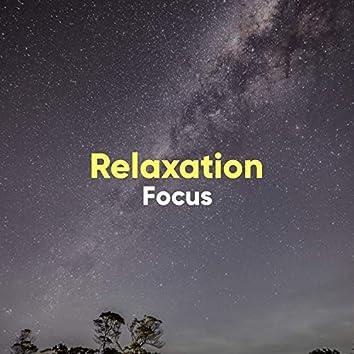# 1 Album: Relaxation Focus