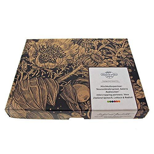 Épinard de Nouvelle-Zélande, laitue batavia & radis - kit cadeau de graines avec 3 plantes compagnes pour la culture associée