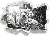 Hund im Wald bei Sonneuntergang Kunst B&W, Papier 3D-Wandsticker Format: 62x45 cm Wanddekoration 3D-Wandaufkleber Wandtattoo