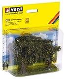 NOCH-21995 Olivos (21995)