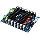 2 * 150W Amplificatore di Potenza Scheda di amplificazione, Classe D DC 12-24V, a Doppio C...