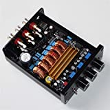 Wnuanjun 1 STÜCK 2.1 Digitalverstärkerplatine Leistung 100W Lautsprecher Stereo Audio AMP-Modul...