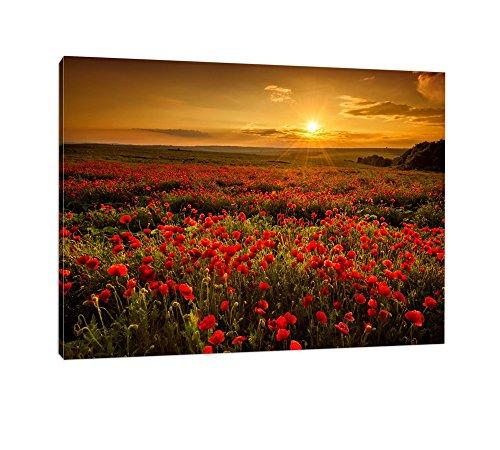 Caro-Art Mohnblütenfeld bei traumhaftem Sonnenuntergang Format: 80x60cm auf Leinwand