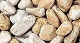 WUEFFE S.R.L. Ciottoli di Marmo Giallo Mori - 8 Sacchi da 25 kg - Sassi Pietre Giardino (20/50)