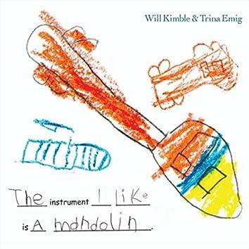 Instrument I Like is a Mandolin