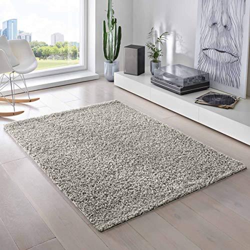 Teporio Shaggy-Teppich | Flauschiger Hochflor fürs Wohnzimmer, Schlafzimmer oder Kinderzimmer | einfarbig, schadstoffgeprüft, allergikergeeignet (Grau - 250 x 250 cm)