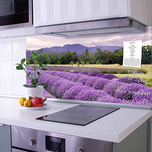 banjado Glas Spritzschutz für Küche und Herd | Küchenrückwand mit Motiv Lavendel | Glasrückwand selbstklebend ohne Bohren | Küchenspiegel magnetisch und beschreibbar (110x55cm)