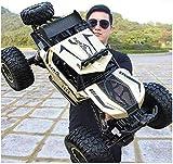 WGFGXQ 1: 8 Coche Grande de Juguete RC Monster Truck 4WD Coche de Control Remoto Off Road 4x4 Crawlers Coche eléctrico Drift Racing Car 2.4Ghz Escalada Buggy Car para niños niñas niños cumpleaños