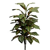 15 Best Factory Direct Craft Indoor Plants