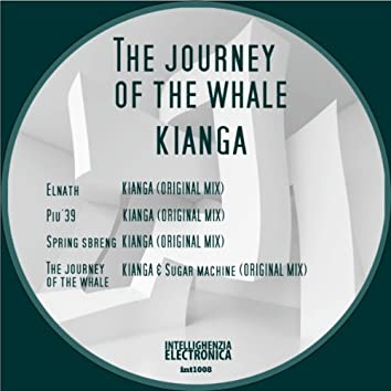 The Journey Of The Whale