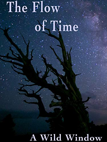 The Flow of Time