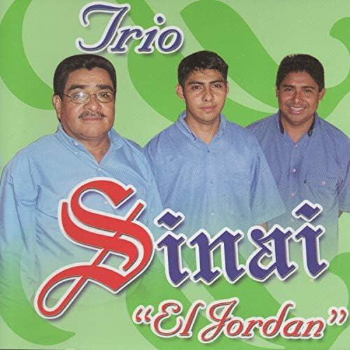 Trio Sinai