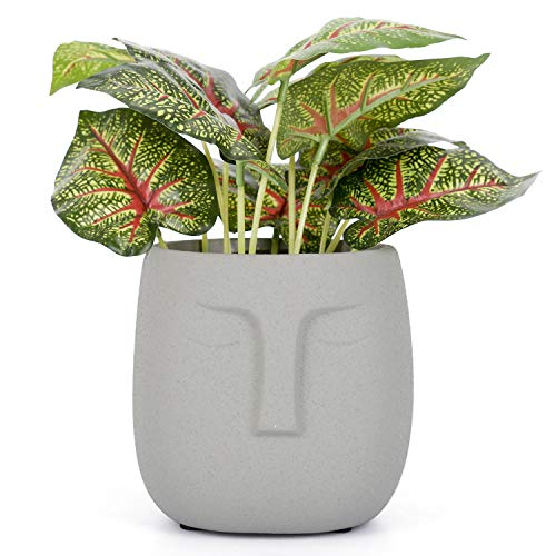 VanEnjoy 5.5 Inches Grey Ceramic Head Face Planter Pot for Plants, Modern Indoor/Outdoor Vase, Face Statue Plant Pot for Home Decoration