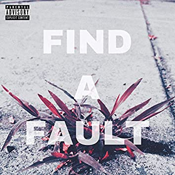 Find a Fault