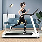 GAYBJ Mechanical Treadmill, Home Fitness Equipment, Small Folding Weight Loss Slimming Treadmill, Mute