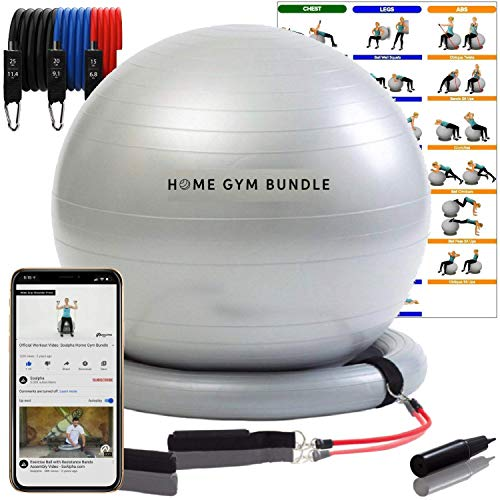 Ultimate Home Gym Bundle Exercise Ball with 15lb, 20lb, & 25lb Resistance Bands and Stability Base - Full Body Workout Fitball - 65CM Yoga Ball Chair for Strength Training, Upper and Lower Toning