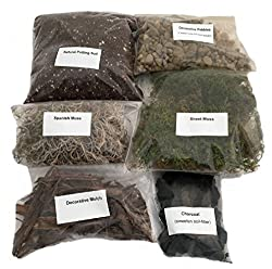 Terrarium Kit DIY Living Terrarium - Best Terrarium Kits