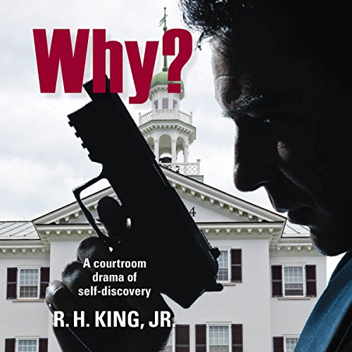 Why? Audiobook By R. H. King Jr. cover art