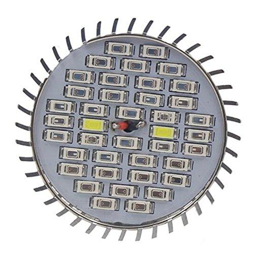 Viktion 9W E27 LED Pflanzenlampe LED Pflanzenlicht Growlicht LED-Pflanzen-Wachstumslampe (9W)