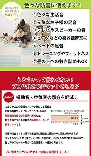 ゼオン化成(ZEON)『サンダムE-45(E45)』