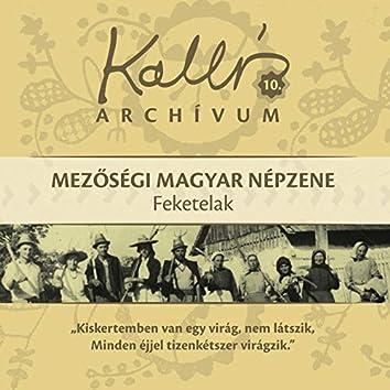 Kallós archívum, Vol. 10 (Mezőségi magyar népzene - feketelak)