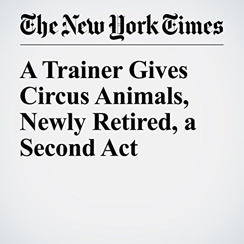 A Trainer Gives Circus Animals, Newly Retired, a Second Act copertina