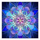 GonFan Kits de Pintura de Diamantes DIY 5D Diamante Pintura Habitación Sala Kaleidoscope Pintura de la Flor de Punto de Cruz albañilería Etiqueta engomada del Diamante (Color : A, Size : 30x30cm)