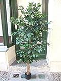 Licht & Grün exclusive Kunstpflanzen Künstlicher Ficus 1,80m grüne Blätter füllig Top Qualität