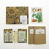 Rinomate varietà classiche di peperoncino (bio) - Set regalo di semi con 4 varietà tradizionali di peperoncino