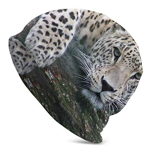 AEMAPE Descansando Leopardo Gorro Casual Gorro de Calavera a Prueba de Viento Orejeras Sombrero Gorra de Domo Sombreros