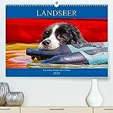 Starick, S: Landseer - Ein starker Freund auf 4 Pfoten(Premi