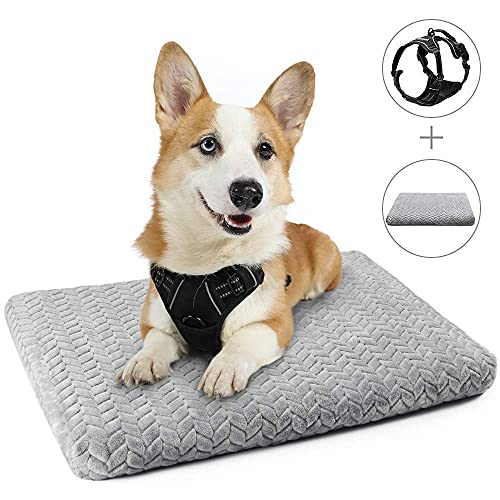 "rabbitgoo Dog Harness Medium and Dog Crate Bed 29"" x 21"" Bundle Set - Adjustable No-Pull Pet Vest with Handle and Leash Clips - Machine-Washable Pet Kennel Bed with Anti-Slip Bottom & Removable Cover"