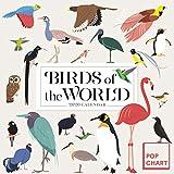 Birds of the World by Pop Chart Lab Wall Calendar 2020