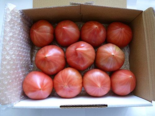 野原農園『減農薬・無化学肥料・ファーストトマト(特別栽培)2kg』
