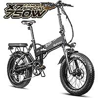 eAhora X7 Plus 750W Folding Electric Bicycle