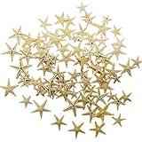 RONYOUNG 90PCS Small Starfish Star Sea Shell Beach Craft 0.4