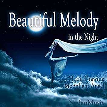 Beautiful Melody in the Night (Soothing Relaxation Music for Sleep)