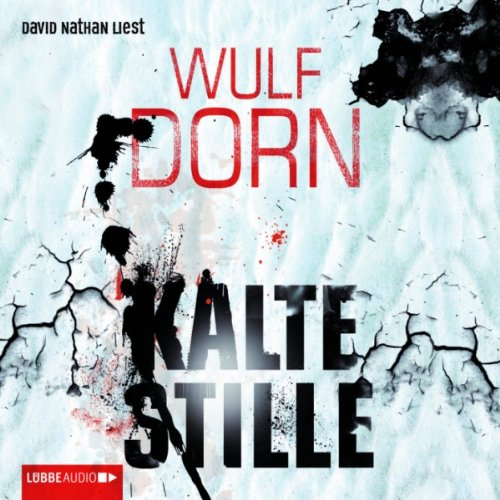 Kalte Stille audiobook cover art