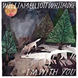 I'm With You (Vinyl)