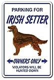 HONGXIN Letrero de metal con bandera irlandesa, diseño de trébol de Irlanda, para decoración del hogar, bar, pub, garaje, banda, cerveza, huevos, café, supermercado, granja, jardín, dormitorio