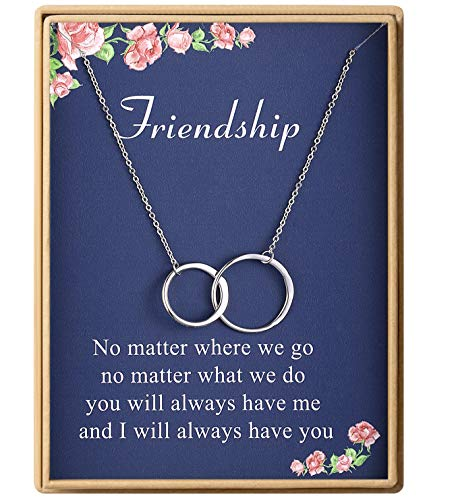 Friendship Necklace S925 Sterling Silver Two Interlocking Infinity Double Circles Necklace for Women Friend Jewelry