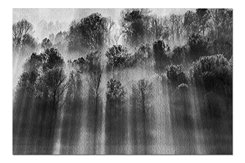 PmseK Puzzles Backlight Over Foggy Forest - Black & White A-9007556 1000 Piece Jigsaw Puzzle