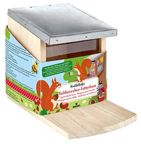 moses. 16120 Krabbelkäfer Eichhörnchen-Futterhaus | Futterstation zum Anmalen und Selbstgestalten | Für Kinder, Holz